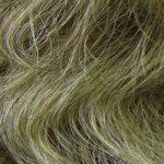 18/22 Light Ash Brown/Light Blonde Frost